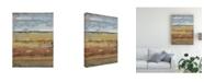 "Trademark Global Tim Otoole Field Layers I Canvas Art - 20"" x 25"""