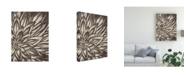 "Trademark Global June Erica Vess Barnwood Blossom II Canvas Art - 37"" x 49"""