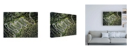 "Trademark Global PhotoINC Studio Road Winding Canvas Art - 27"" x 33.5"""