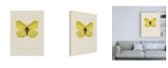 "Trademark Global Incado Gonepteryx rhamni Canvas Art - 15.5"" x 21"""