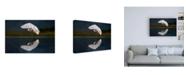 "Trademark Global Xavier Ortega Egret at Dusk Canvas Art - 36.5"" x 48"""