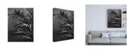 "Trademark Global Design Fabrikken Black Plant Fabrikken Canvas Art - 15.5"" x 21"""