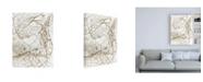 """Trademark Global Design Fabrikken Leaf Skeleton Fabrikken Canvas Art - 27"""" x 33.5"""""""