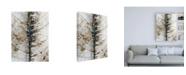 """Trademark Global Design Fabrikken Close Up Fabrikken Canvas Art - 19.5"""" x 26"""""""