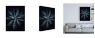 """Trademark Global Design Fabrikken Star Flower Fabrikken Canvas Art - 27"""" x 33.5"""""""