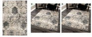 Palmetto Living Riverstone Oxford Burst Cloud Gray Area Rug Collection