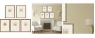"Paragon Morphologies Framed Wall Art Set of 5, 17"" x 13"""