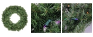 """Northlight 24"""" Pre-Lit LED Canadian Pine Artificial Christmas Wreath - Multi Lights"""