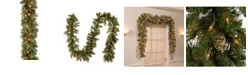 """National Tree Company 9' x 10"""" Carolina Pine Garland with 27 Flocked Cones and 100 Clear Lights"""