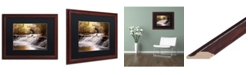 "Trademark Global Jason Shaffer 'Avon Falls' Matted Framed Art - 20"" x 16"""