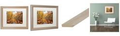 "Trademark Global Jason Shaffer 'Beaver Creek 2' Matted Framed Art - 20"" x 16"""