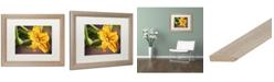 """Trademark Global Jason Shaffer 'Cucumber Bloom' Matted Framed Art - 20"""" x 16"""""""
