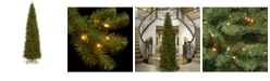 National Tree Company National Tree 12' North Valley Spruce Pencil Slim Tree with Clear Lights