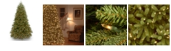 National Tree Company National Tree 6 .5' Feel Real Jersey Fraser Fir Medium Tree with 900 Clear Lights