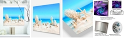 "Design Art Designart 'Seashells On Tropical Beach' Seashore Photo Metal Wall Art - 20"" X 12"""