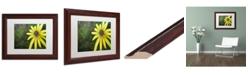 "Trademark Global Jennifer Redstreake 'Black Eyed Susan' Matted Framed Art - 11"" x 14"""