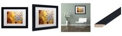 "Trademark Global Natasha Wescoat '044' Matted Framed Art - 11"" x 14"""