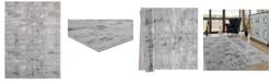 """Asbury Looms Cascades Salish 2601 10972 912 Gray 7'10"""" x 10'6"""" Area Rug"""