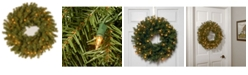 "National Tree Company 24"" Norwood Fir Wreath with 50 Clear Lights"