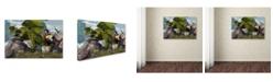 "Trademark Global Daniel Eskridge 'Bard And Dragon' Canvas Art - 24"" x 16"" x 2"""