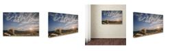 "Trademark Global Jackson Carvalho 'The King And His Kingdom' Canvas Art - 24"" x 16"" x 2"""
