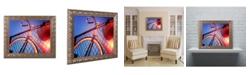 """Trademark Global Jason Shaffer 'Fixie' Ornate Framed Art - 20"""" x 16"""""""