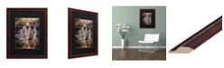 """Trademark Global Jason Shaffer 'Hidden Falls' Matted Framed Art - 16"""" x 20"""""""