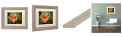 """Trademark Global Jason Shaffer 'Maple Moss' Matted Framed Art - 14"""" x 11"""""""