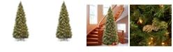 National Tree Company National Tree 12' Carolina Pine Slim Wrapped Tree with  Flocked Cones & Clear Lights