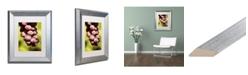 """Trademark Global Jason Shaffer 'Homegrown Grapes' Matted Framed Art - 11"""" x 14"""""""