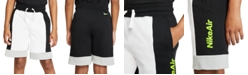 Nike Big Boys Colorblocked French Terry Shorts