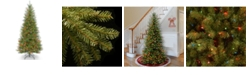 National Tree Company National Tree 7 .5' Dunhill Fir Slim Tree with 600 Multicolor Lights