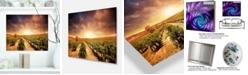 "Design Art Designart 'Vineyard With Stormy Sunset' Extra Large Wall Art Landscape - 20"" X 12"""