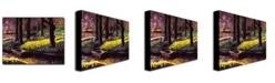"Trademark Global David Lloyd Glover 'Daffodil Park' Canvas Art - 32"" x 26"""