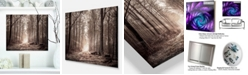 "Design Art Designart 'Forest Trail In Sepia' Landscape Photography Metal Wall Art - 20"" X 12"""