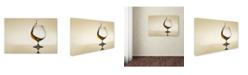 "Trademark Global Jackson Carvalho 'Splash Curves' Canvas Art - 24"" x 16"" x 2"""
