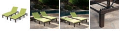 Noble House Jamaica Outdoor Chaise Lounge, Set of 2