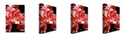 "Trademark Global David Lloyd Glover 'Wild Roses' Canvas Art - 24"" x 16"""