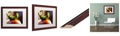 "Trademark Global Jason Shaffer 'Caterpillar & Tomato' Matted Framed Art - 20"" x 16"""