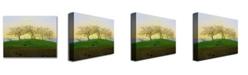 """Trademark Global Caspar Friedrich 'Hills and Ploughed Fields' Canvas Art - 24"""" x 18"""""""