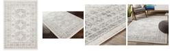 """Abbie & Allie Rugs Chester CHE-2309 Silver 5'3"""" x 7'3"""" Area Rug"""