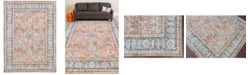 """Amer Rugs Century CEN-16 Coral 7'10"""" x 10'6"""" Area Rug"""