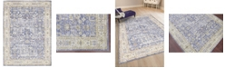 "Amer Rugs Century CEN-6 Lavender 5'3"" x 7'3"" Area Rug"