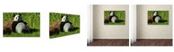 "Trademark Global Daniel Eskridge 'Reclining Panda' Canvas Art - 19"" x 12"" x 2"""