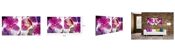 """Chic Home Decor Orchid 2 Piece Wrapped Canvas Wall Art Floral Design -16"""" x 32"""""""