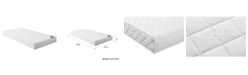 Safety 1st Transitions Crib and Toddler Bed Mattress