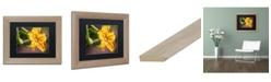 """Trademark Global Jason Shaffer 'Cucumber Bloom' Matted Framed Art - 14"""" x 11"""""""