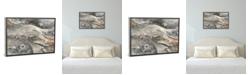 "iCanvas Minerals Iii by Albena Hristova Gallery-Wrapped Canvas Print - 18"" x 26"" x 0.75"""