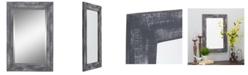 Aspire Home Accents Morris Wall Mirror - Gray 30 x 20