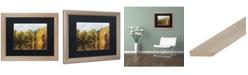 """Trademark Global Jason Shaffer 'Autumn Reflections' Matted Framed Art - 20"""" x 16"""""""